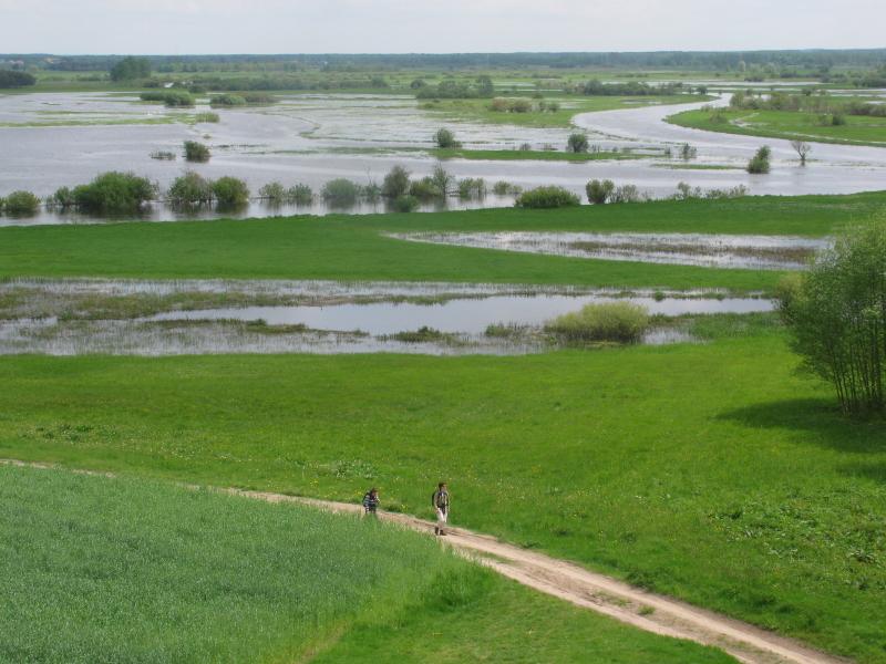 Noordoost Polen wandelen langs de Biebrzamoerassen Agro Natura