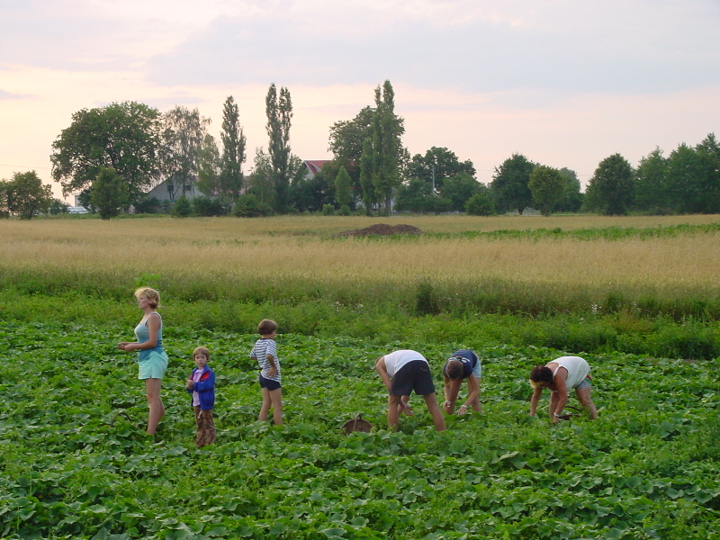 Noordoost Polen wandelreis lang biologische boeren