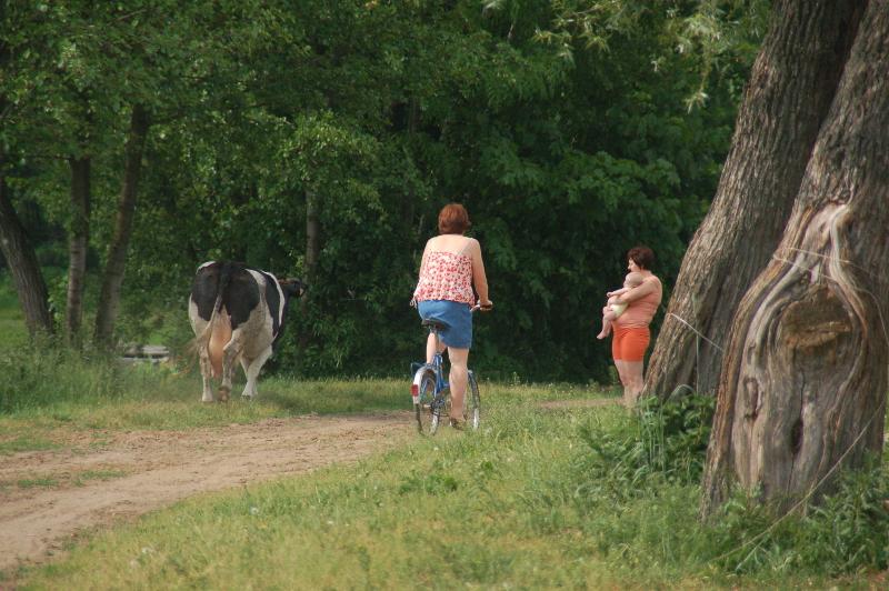 Noordoost Polen dorpstraat op het platteland