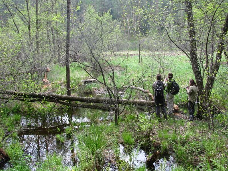 Noordoost Polen, wandelen in het Suwalki Landschapspark