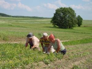 Reis langs biologische boeren