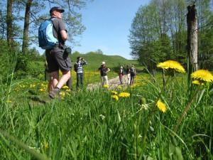 Polen: Wandelen in de stroomdalen van Narew en Biebrza