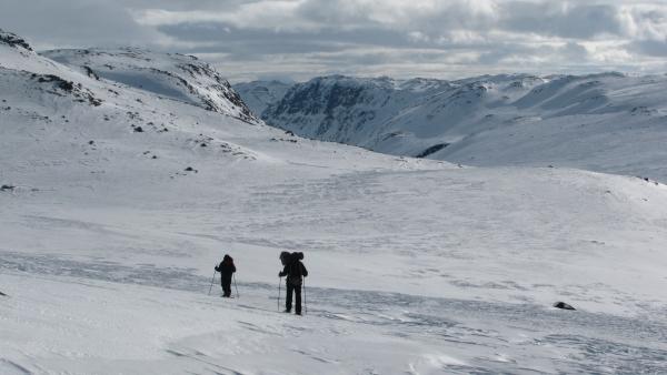Sneeuwwandelen trektocht Hardangervidda Noorwegen Agro Natura