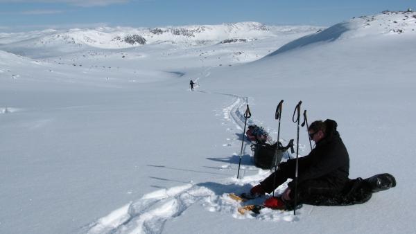 Hardangervidda Noorwegen Agro Natura Sneeuwwandelen
