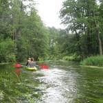 Kanovaren op de Rospuda. Agro Natura Noordoost Polen specialist Kanoreizen