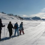 Noorwegen-Rauland-Sneeuwwandelen-in-de-loype