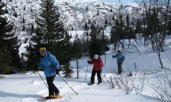 Noorwegen, sneeuwwandelreis, sneeuwwandelen Telemark