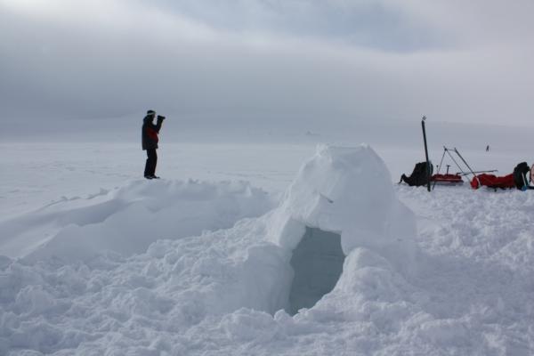 Noorwegen, hardangervidda, winterreis, iglo