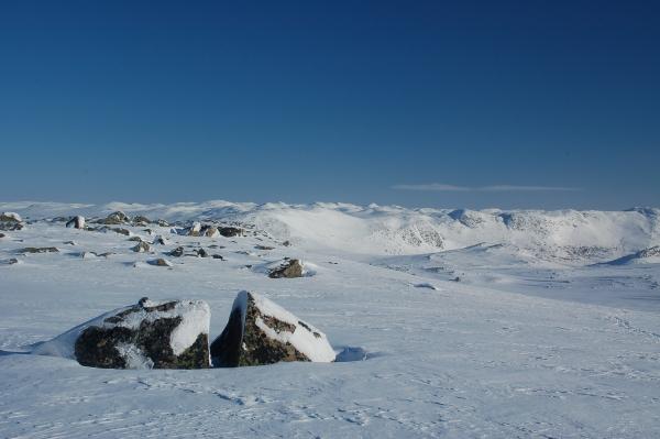 Noorwegen Hardangervidda Sneeuwwandelen Langlaufen