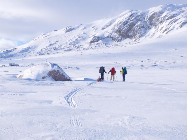 Noorwegen, Hardangervidda, langlauftrektocht, winterreis