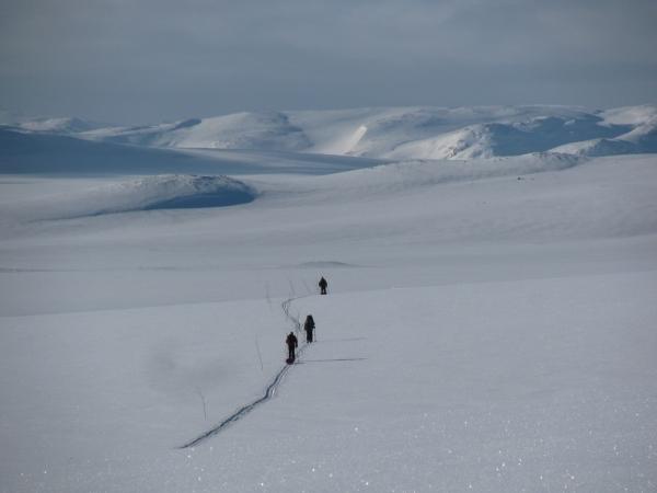 Noorwegen, Hardangervidda, langlaufreis, trektocht