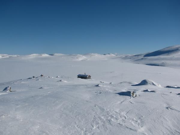 Noorwegen, Hardangervidda, winterreis, sneeuwwandelen, langlaufen