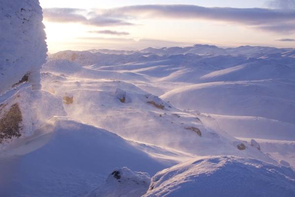 Noorwegen, hardangervidda, winterreis