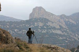 Spanje special: vogelreis Monegros en Pyreneeën