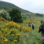 Engeland-Schotland wandelen op de Cuthbert's way door de Scottish Borders