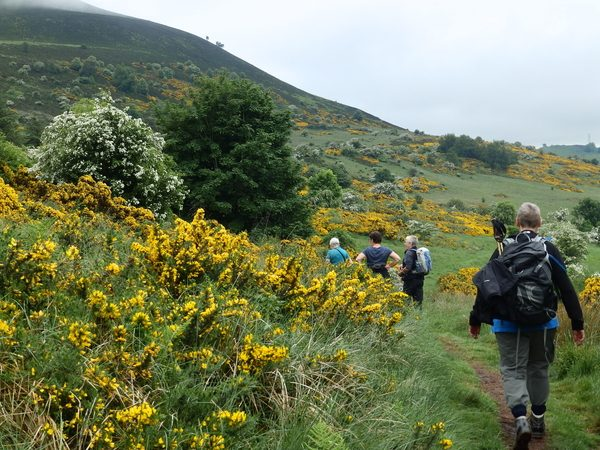 Engeland-Schotland wandelen op de Cuthbert's way door de Scottish Borders
