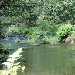 engeland coast to coast walk beek tussen lake district en yorkshire dales