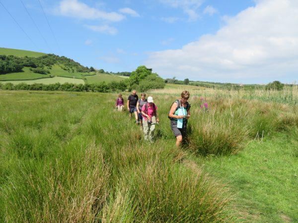 Engeland Coast to Coast walk het Lake District