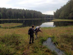 Polen special, natuurreis: onbekende pareltjes in Noordoost Polen