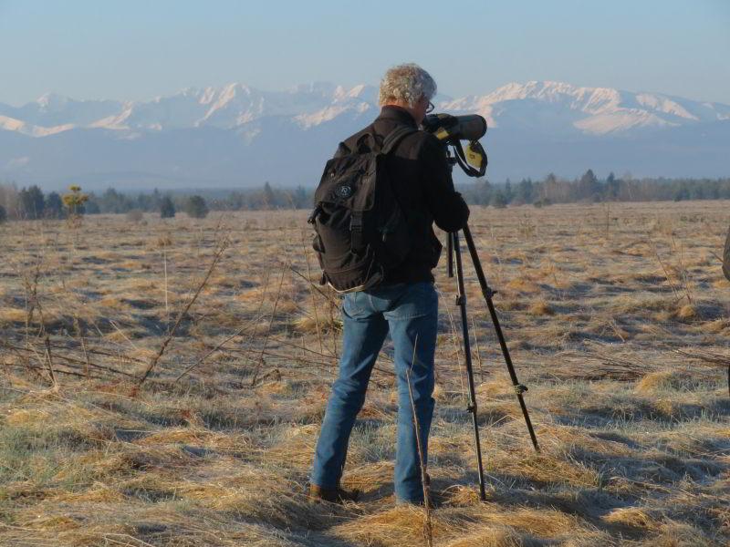Baltsende Korhoenders in de kijker. Op de achtergrond de Tatra