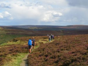 Engeland: North York Moors, Coast to Coast Walk, deel 3