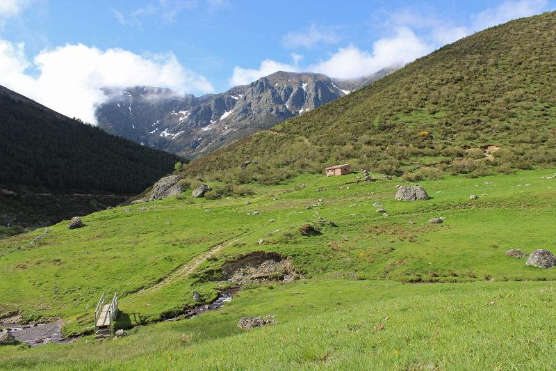 Alpenweiden in de Picos de Europa